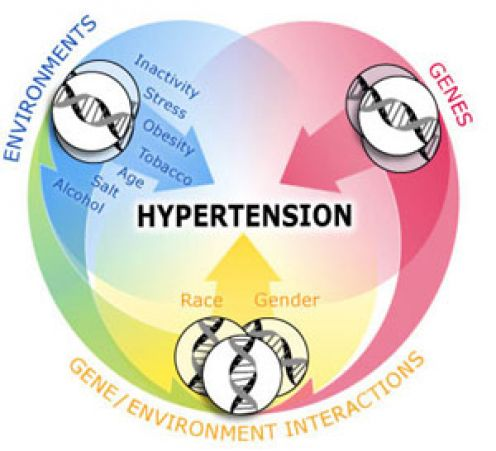 hyperextension2
